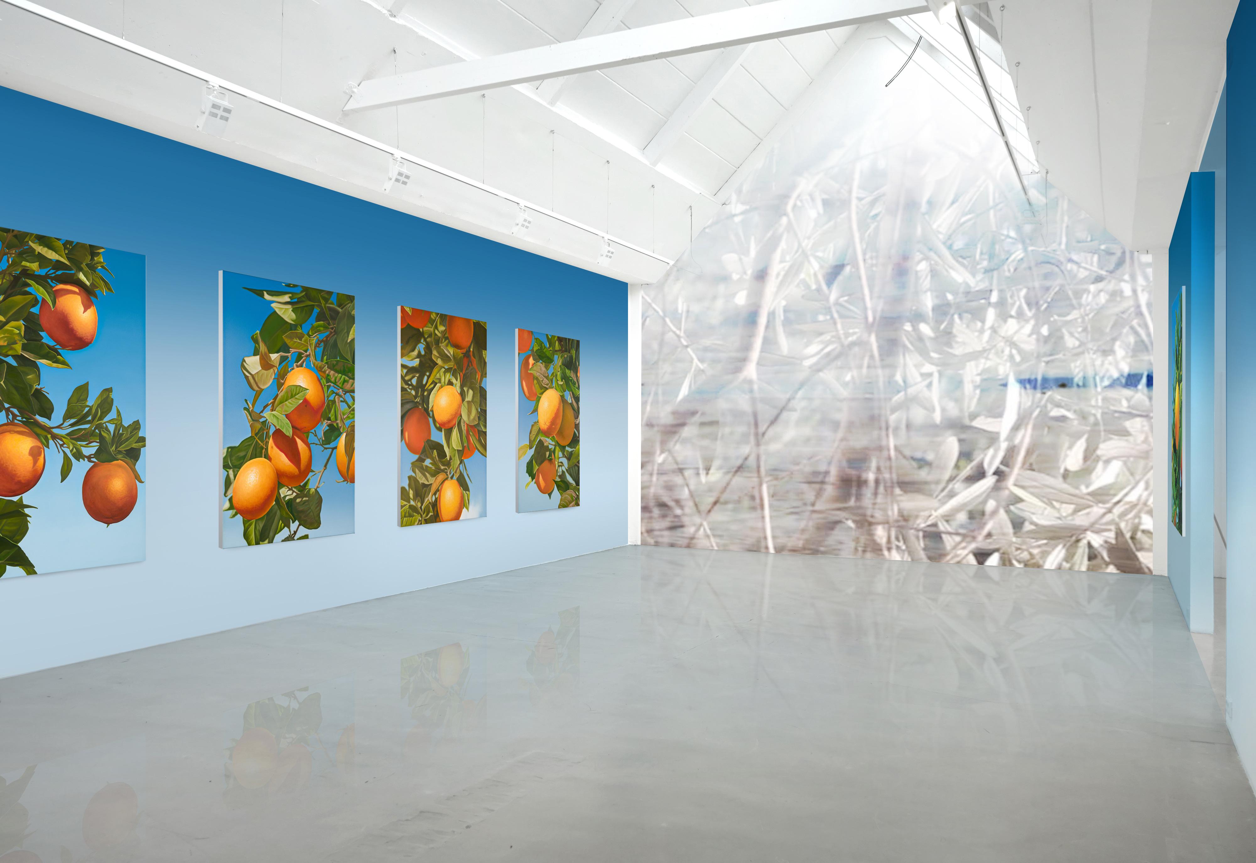 Galerie Barbara Thumm \ New Viewings \ New Viewings #37